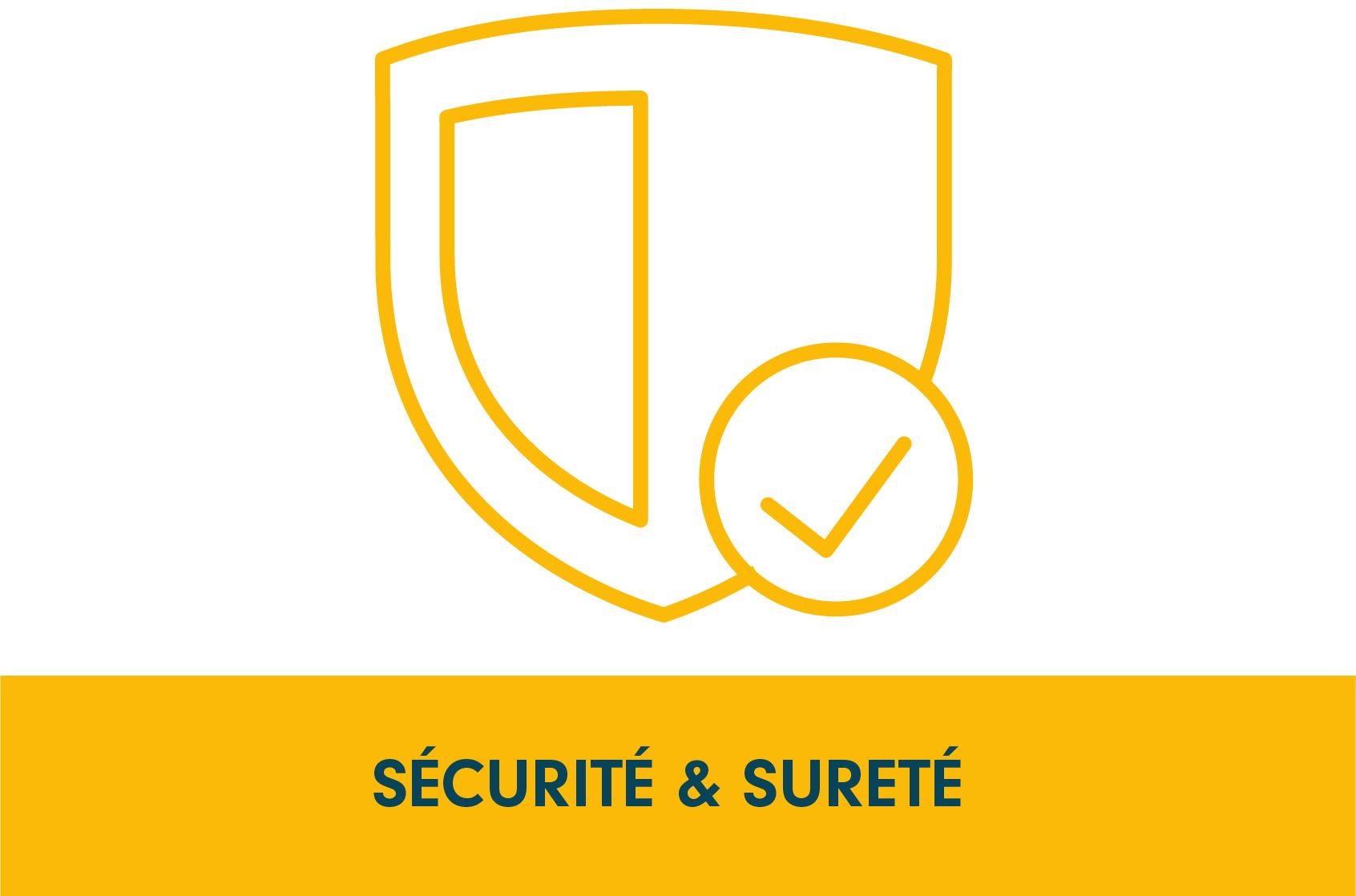 Pictogramme programme de recherche, sécurité & sureté